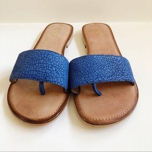 Seychelles Weekenders Blue Sandals 10